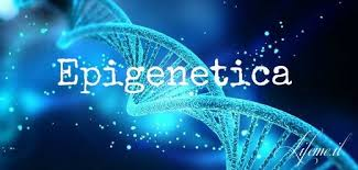 "Epigenetica ed alimentazione: ""Why Your DNA Isn't Your Destiny"""